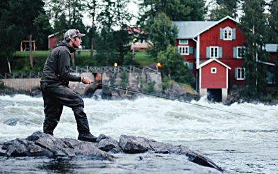 Fiskesugen? Nyfiken på fiske? Fiskerättsägare?
